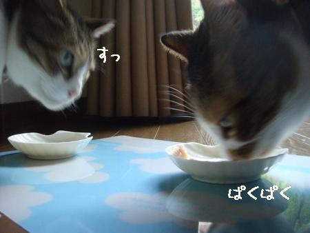 misukeBD002.jpg