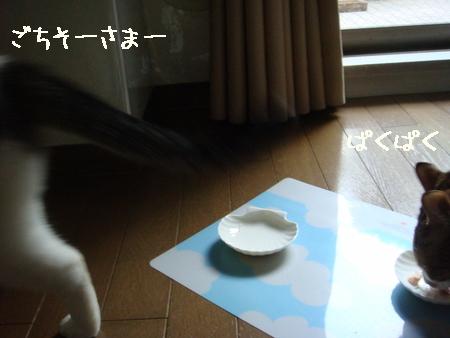 misukeBD004.jpg