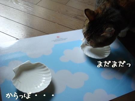 misukeBD005.jpg