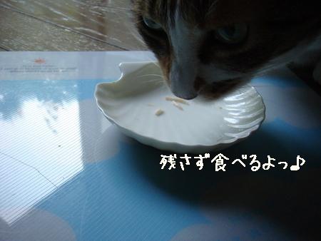 misukeBD006.jpg