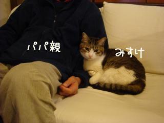 oihagi001.jpg
