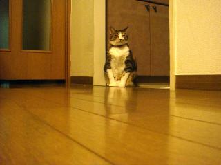 ojizo-san001.jpg