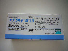 P1030349.jpg