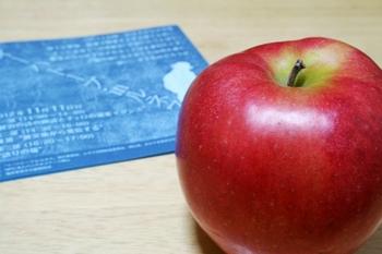イーハトーブからのりんご.jpg