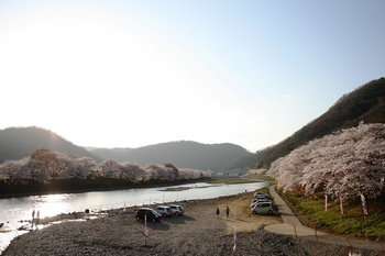 夕暮れ前の井原堤.jpg