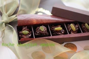 Roche_chocolat_amande2_pt.jpg