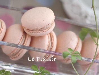 macaron_fruits_des_bois.jpg