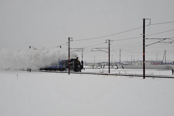北びわこDSC_8476.jpg