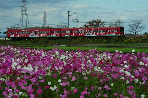 近江鉄道DSC_5721.jpg