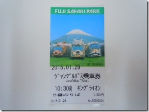 jungle bus ticket