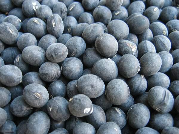 7.黒豆-(2).jpg
