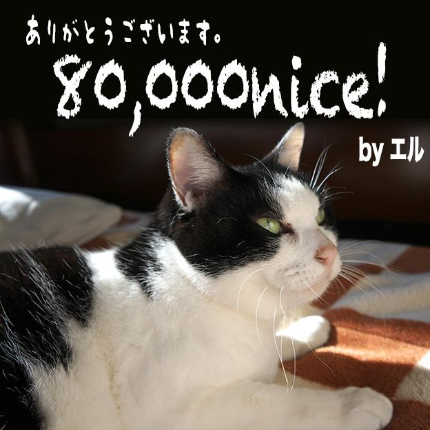so-net0056.jpg