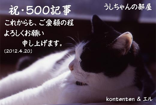 so-net623221.jpg