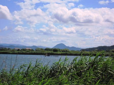 IMG_0386西の湖.jpg