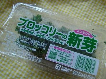 food1240.jpg