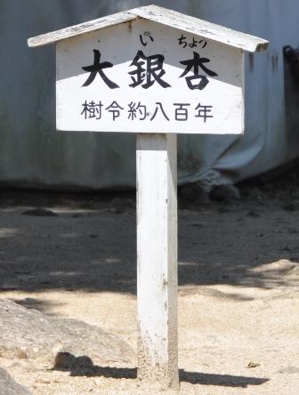 5番札所地蔵寺 (5).JPG