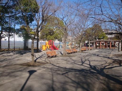 春江の森05.jpg