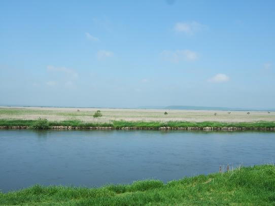 湿原1-2.JPG