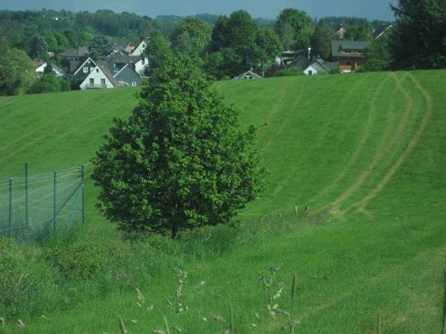 ドイツ 風景.jpg