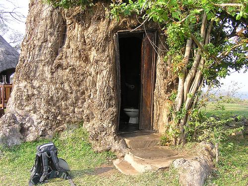 baobab-toilet.jpg