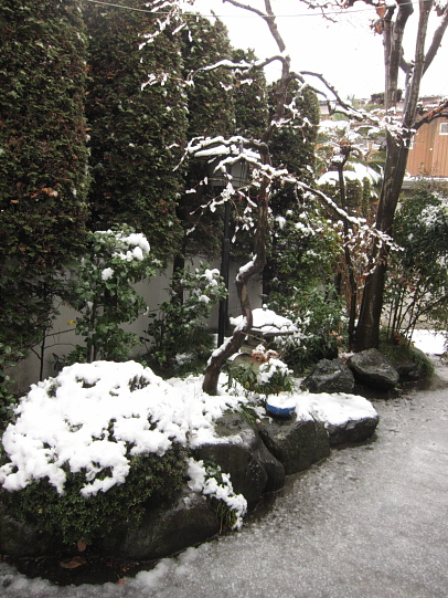 雪10002.JPG