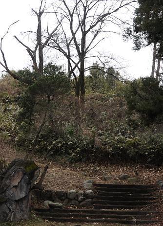 狭山富士麓7.jpg