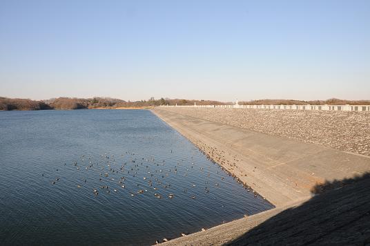 狭山湖2.jpg