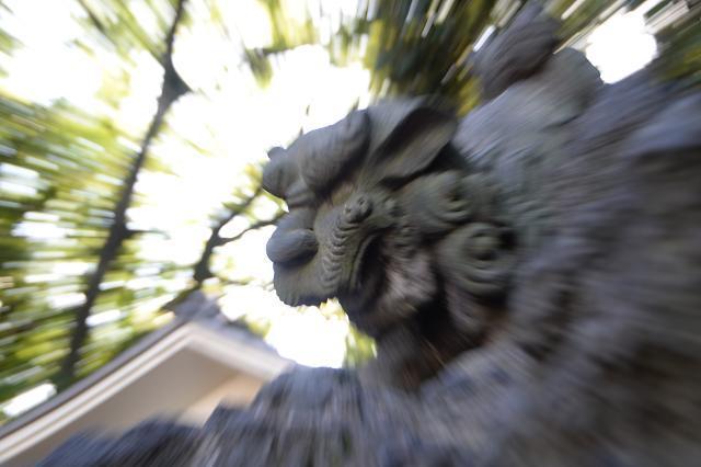 1平塚神社狛犬.jpg