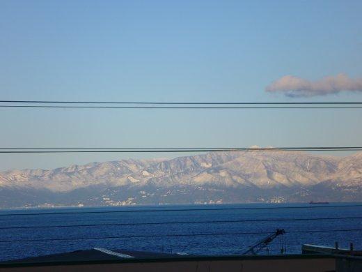 230211ooshima 155.jpg