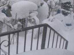 2009年1月11日PM1.jpg