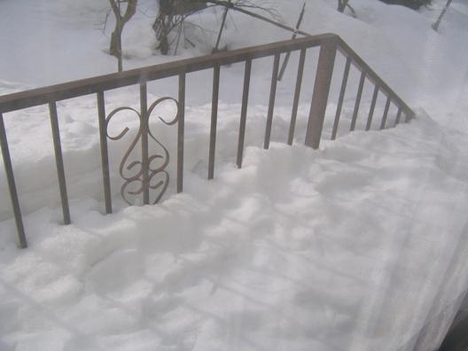 2011年2月6日右.jpg