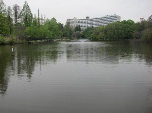 井の頭公園02.jpg