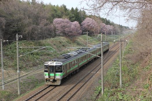 大麻鉄道林02.jpg