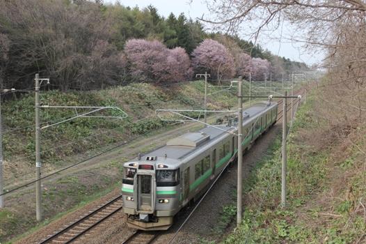 大麻鉄道林03.jpg