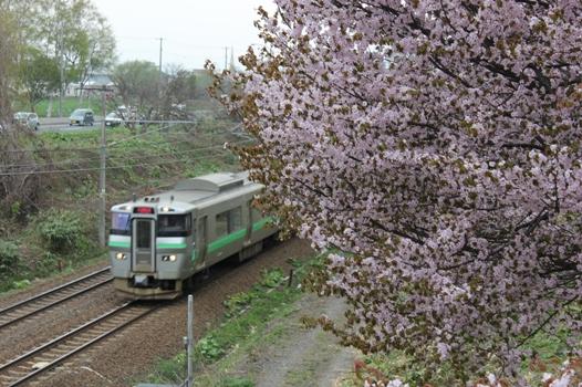 大麻鉄道林06.jpg