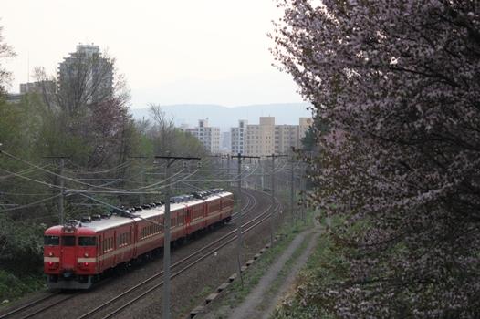 大麻鉄道林08.jpg