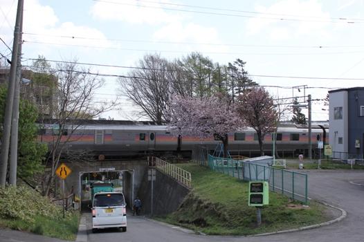 桜とカシオペア01.jpg