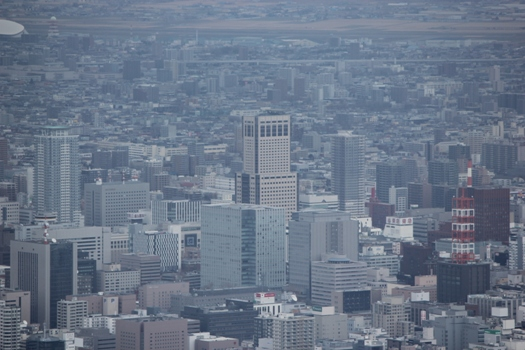藻岩山展望台10.jpg