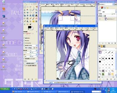 GIMP07-bacca.jpg