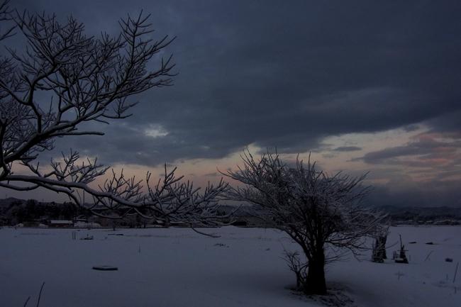 冬景08.jpg