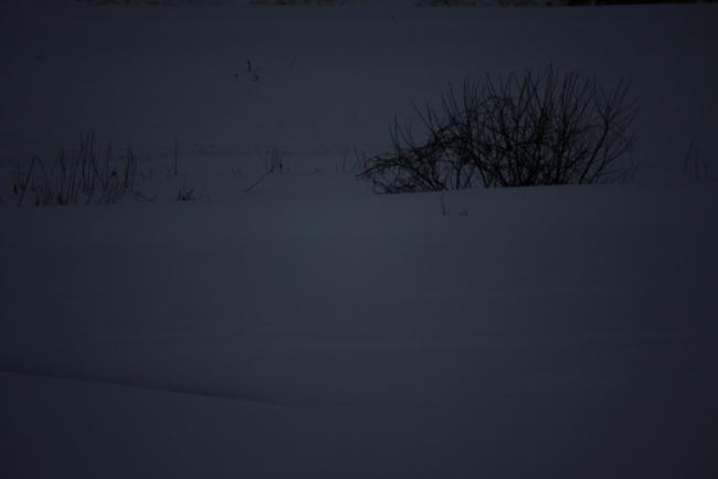 冬空04.JPG