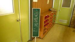20090705 狩られ道TA JT09 熊本10.jpg