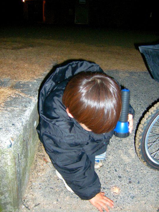 自転車王子12