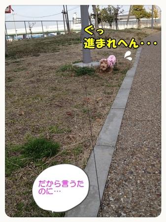 20130316_9.JPG