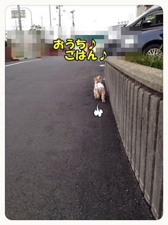 20130317_5.JPG