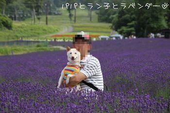 IMG_0074.JPG
