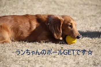 IMG_0135-1.JPG