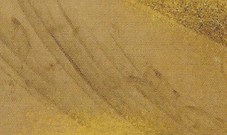 伝・長沢蘆雪 「渓流香魚図」 部分@東本願寺 73.jpg
