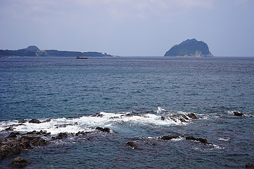 D14年6月18日西帰浦の海辺-520.jpg