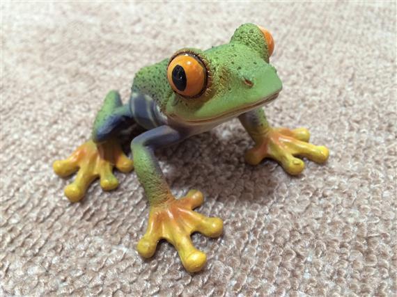 Frog_9983b.jpg
